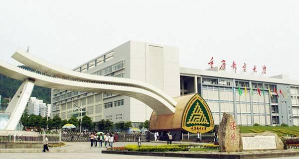 【兼职】重庆邮电大学活动协助