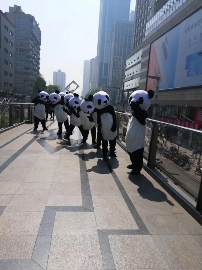 成都春熙路熊猫路演